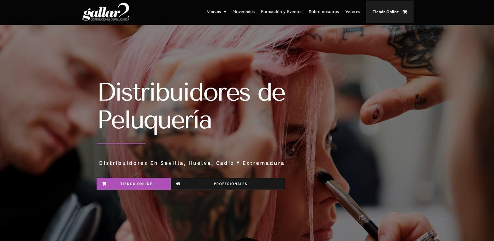 diseño-web-Distribuidores-de-peluqueria-Gallar2